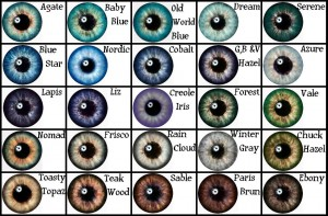 mts_lionspau-1408202-masterpieceeyechart